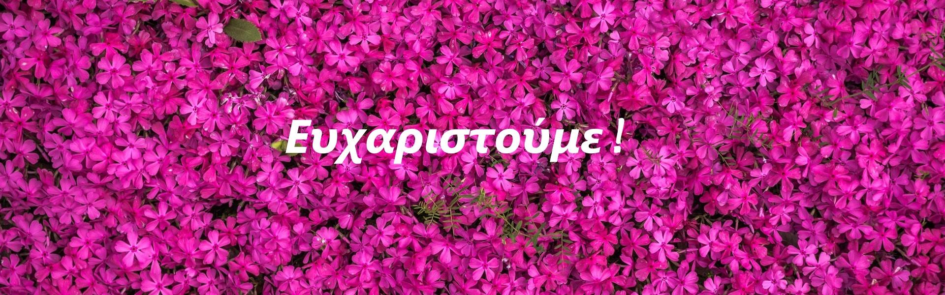 pexels-photo-414667